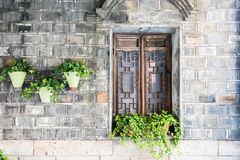 old wooden window and flower pot Stock Photography
