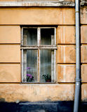 Old wooden windows frame on cement cracked wall Royalty Free Stock Image