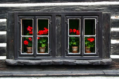 Old wooden windows Stock Image