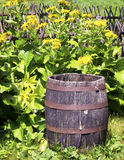 Old wooden wine cask Stock Image