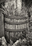 Old wooden wine cask. At a farmhouse stock photos