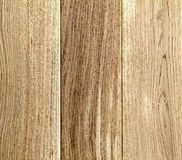 Old wooden yellow or brown texture background. Boards or panels Royalty Free Stock Image