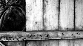 Old woods. Old wooden door close to still living tree is remember me to old times Royalty Free Stock Image