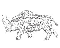 Old woolly rhinoceros Royalty Free Stock Image