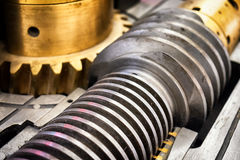 Old worm gear Stock Photos