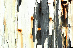 Old and Worn. Wooden door with peeling paint and rust marks Stock Photo