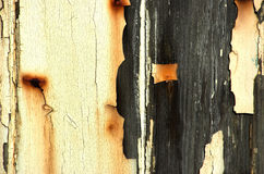 Old and Worn. Wooden door with peeling paint and rust marks Stock Photography