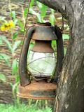 Old worn  lamp. Worn lamp on the tree Stock Photography