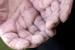 Old worn out hands in the garden Stock Photo