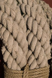 Old worn rope background Royalty Free Stock Image