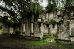 Old and worn ruins, abandoned building surrounded by lots of vegetation and trees royalty free stock photo