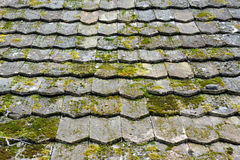 Old worn shingles Stock Photo