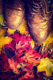 Old worn shoes  on colorful autumn foliage, close up, retro Stock Image