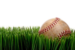 An old worn sports baseball on grass Royalty Free Stock Photo