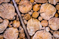 Old and worn wooden logs wall Royalty Free Stock Image