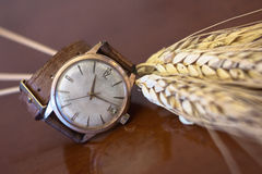 Old wrist watch Stock Images