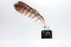 Old writing feather in the black ink pot Stock Photography