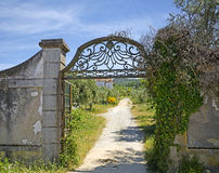 Old wrought iron gate Stock Photography