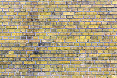 Old yellow brick wall Royalty Free Stock Photography