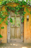 Old yellow door. With leaf above royalty free stock photo