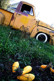 Old yellow ford truck. In a backyard royalty free stock photos