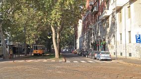 Old yellow tram in Milan. Milan, Italy - September 05 2014:  Old yellow tram on the street of the city stock video