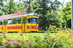 Serbia, Belgrade Tram`s. Old Yellow Tram stock images