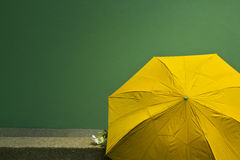 Old yellow umbrella on the green cement wall background. Concept Royalty Free Stock Images