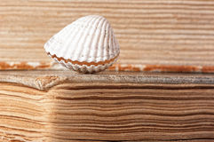 Old yellowed book. Old yellowed books and shell Stock Photo
