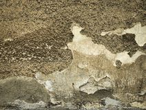 Old and yellowed plaster Stock Photography