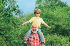 Old and Young. Family generation and relations concept. Bearded grandfather and grandson playing with on sunny day stock photography