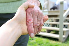 Old and young hands in backyard Stock Images