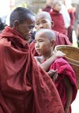 Old and Young Monks Myanmar Burma Stock Images