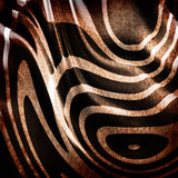 Old zebra skin Stock Photography