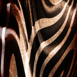 Old zebra skin Stock Photo