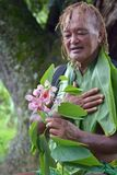 Olde aged Pacific Islander man looks at exotic flower on eco tourism tour in Rarotonga Cook Islands. Olde aged Pacific Islander man age 75 looks at exotic flower stock images