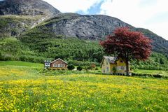 Olden, Norway Stock Photo