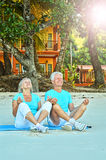 Older couple on beach Stock Images