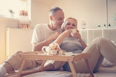 Older couple having breakfast on bed. royalty free stock photo