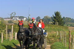 Older couple riding a horse and carriage. Netherlands, province Limburg, near the village of Epen driving a couple, man and wife, with their car and horses on a Royalty Free Stock Image