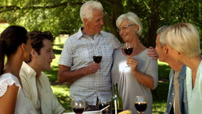Older couple toasting with family in park stock video footage