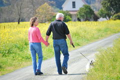 Older couple walking their dog on a country road Stock Images