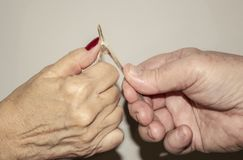 Older couples hands pulling a wishbone from a turkey to see who gets their wish against a light background.  stock photos
