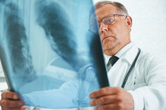 Older doctor is analyzing x-ray image Royalty Free Stock Image