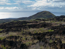 Older lava flow Maui Hawaii Royalty Free Stock Images
