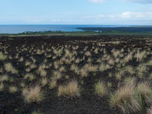 Older lava flow Maui Hawaii. Older lava flow with grass recovering lost ground.  Maui Hawaii Royalty Free Stock Image