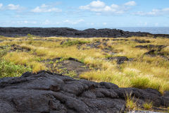 Older lava flow with plants, Hawaii Royalty Free Stock Photos