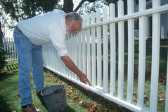 Older man painting white picket fence Stock Photo