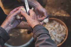 Older person`s hands peeling potatoes royalty free stock photography