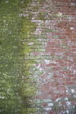Older red brick wall with contrasting green moss Stock Photo